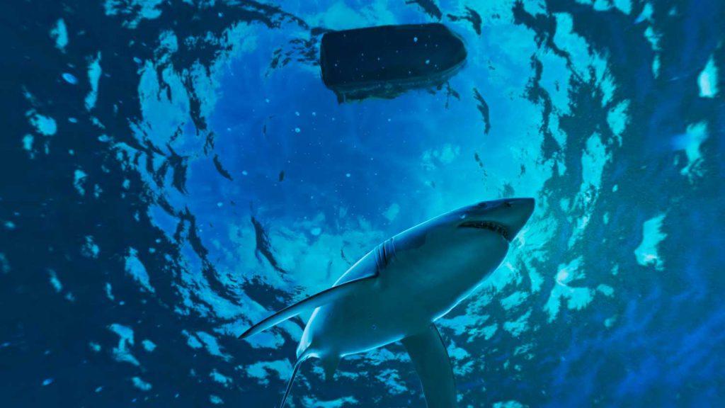 NorthSails-Shark Diving in VR-DrawLight